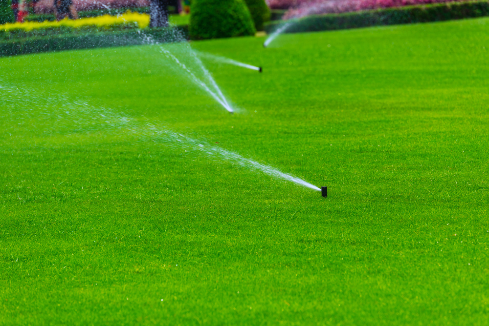 Professional Irrigation System